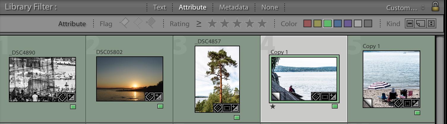 Lightroom attribute filter