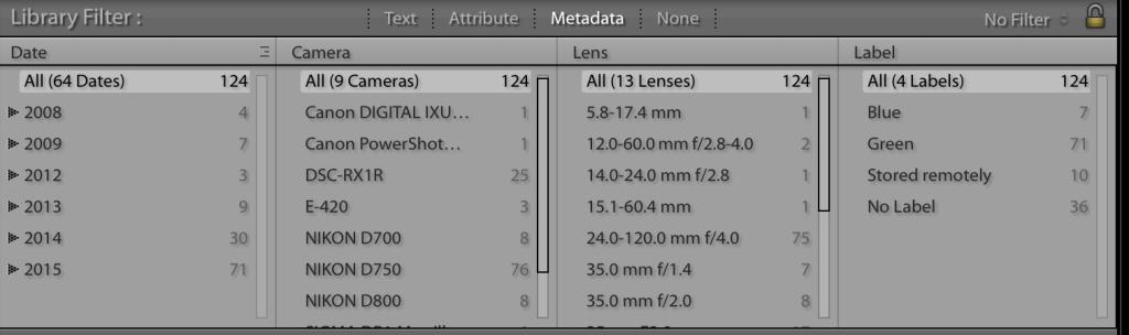 Lightroom metadata filter