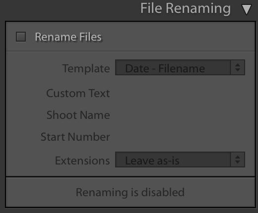 Lightroom file renaming