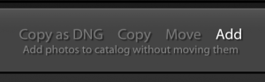 Lightroom import add