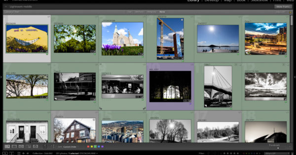Lightroom organisering